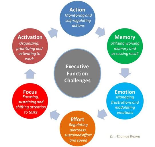 Executive-Function-Brown