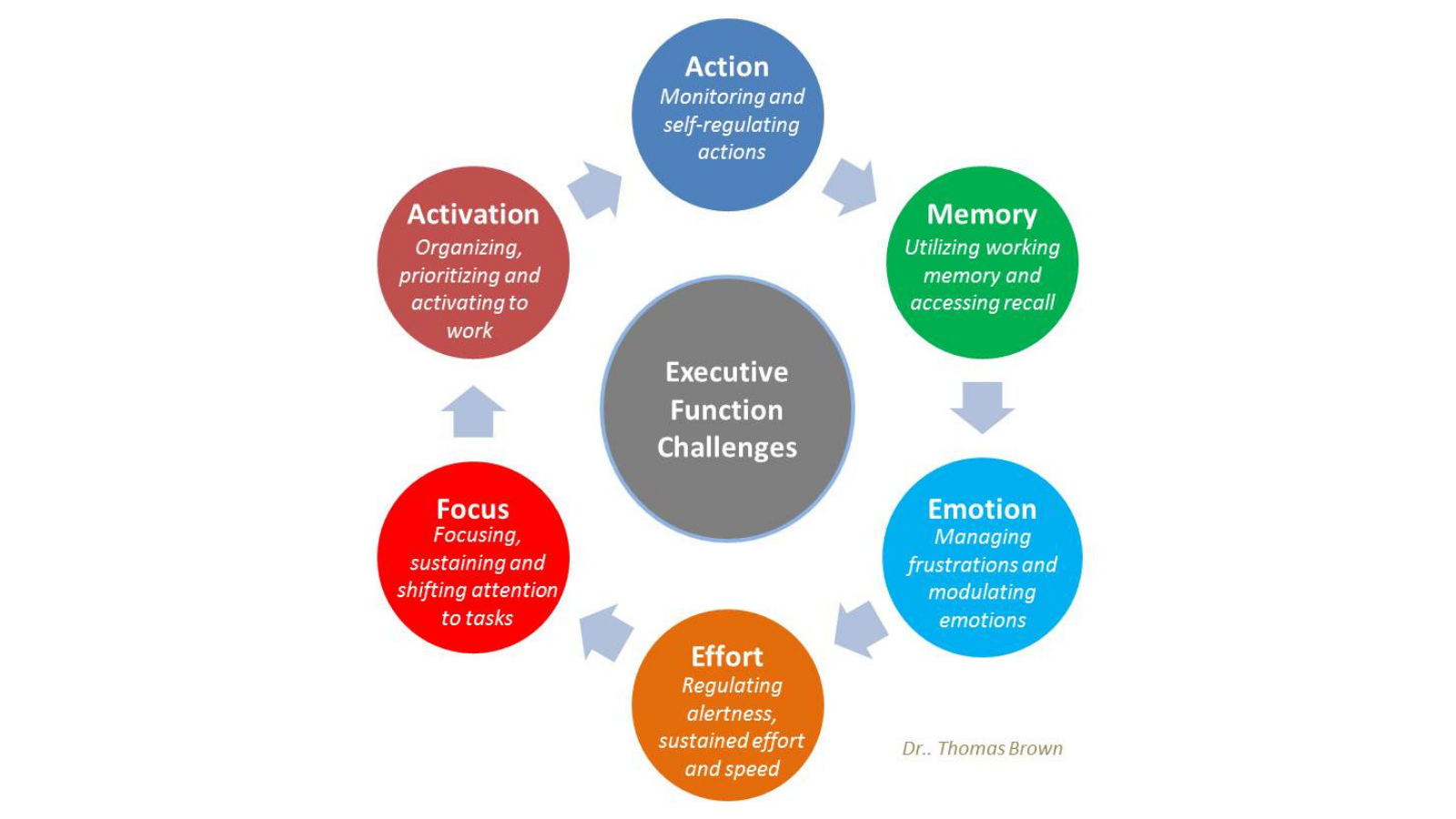 Executive Function Featured Image
